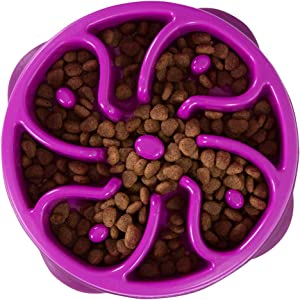 Outward Hound Fun Feeder Dog Bowl