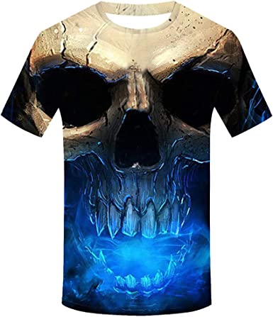 - Adult T-Shirt XL Sunset from Ventura State Beach 3dRose Danita Delimont Ventura Sunsets California USA ts/_314700