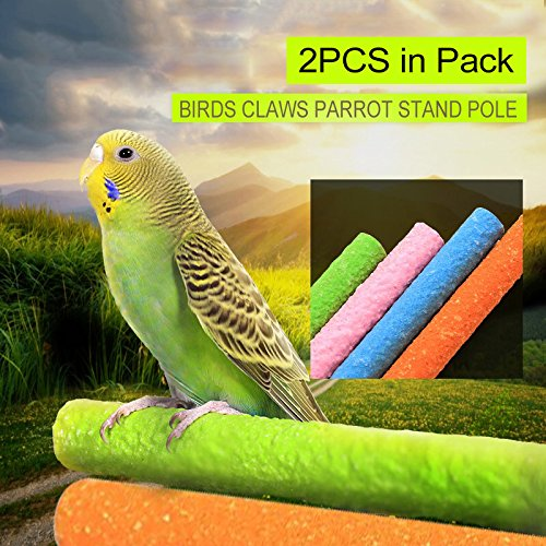 Borange Bird Perch Parrot Stand Parakeet Natural Wood Rough Sand Perches Grinding Nail for Small and Medium Birds African Grey Parakeet Cockatiels Conure Cage Accessories Pack of 2 (25cm/10inch) by Borange