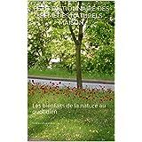 PETIT DICTIONNAIRE DES REMÈDES NATURELS MAISON: Les bienfaits de la nature au quotidien (French Edition)