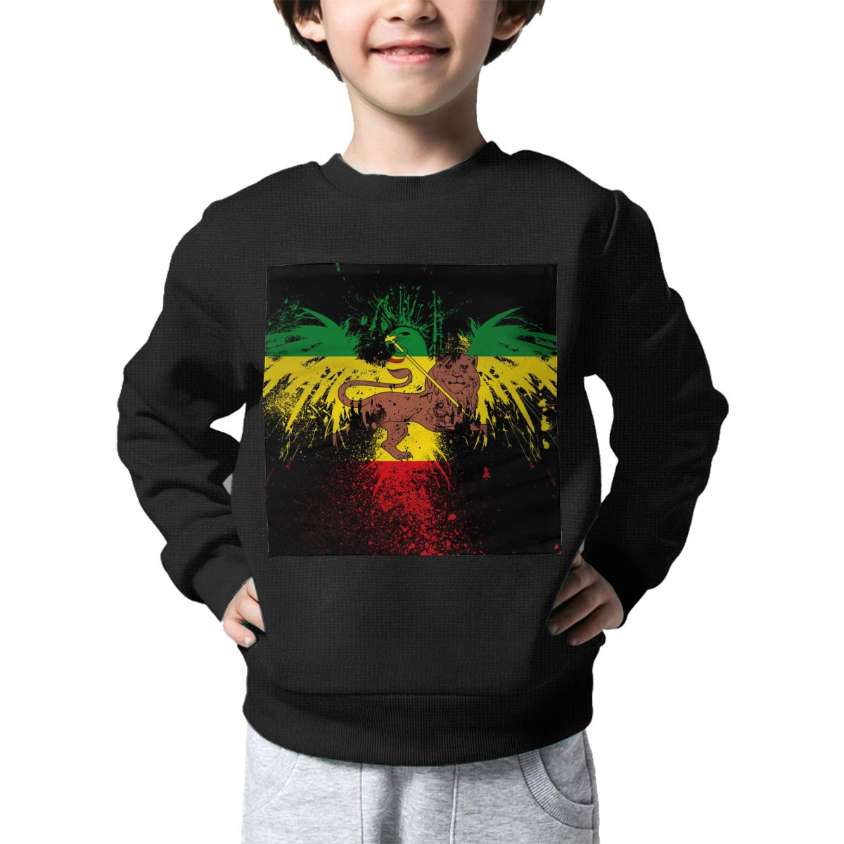 BaPaLa Rasta Lion Kids Pullover Sweater Lovely Crew Neck Knitted Sweater for 2-6T