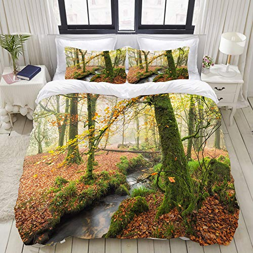 LUBATAGA Duvet Cover Set,Misty Autumn Woodland and Stream at Golitha Falls on Bodmin Moor in Cornwall, Decorative 3 Piece Bedding Set with 2 Pillow Shams,King