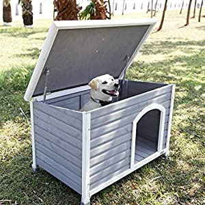 Amazon Com Petsfit 40 8 Quot X 26 Quot X 27 6 Quot Cm Wooden Dog