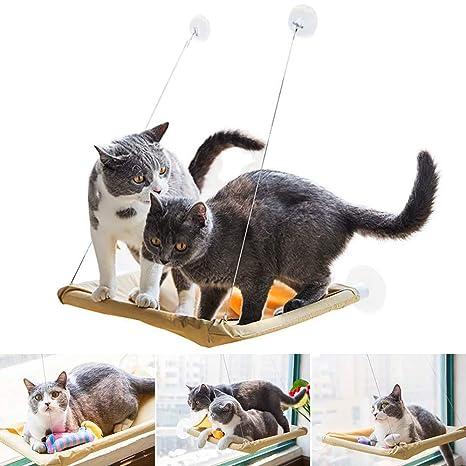 HINATAA Hamaca para Gato con ventosas más Fuertes, Cama para Gato más Segura para Gatos