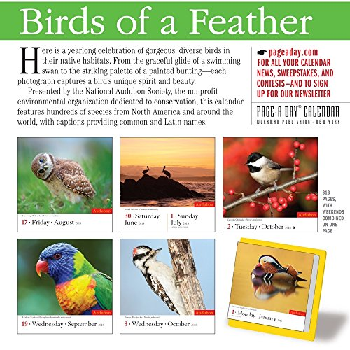 Audubon Birds 2018 Color Page-A-Day Calendar Photo #4