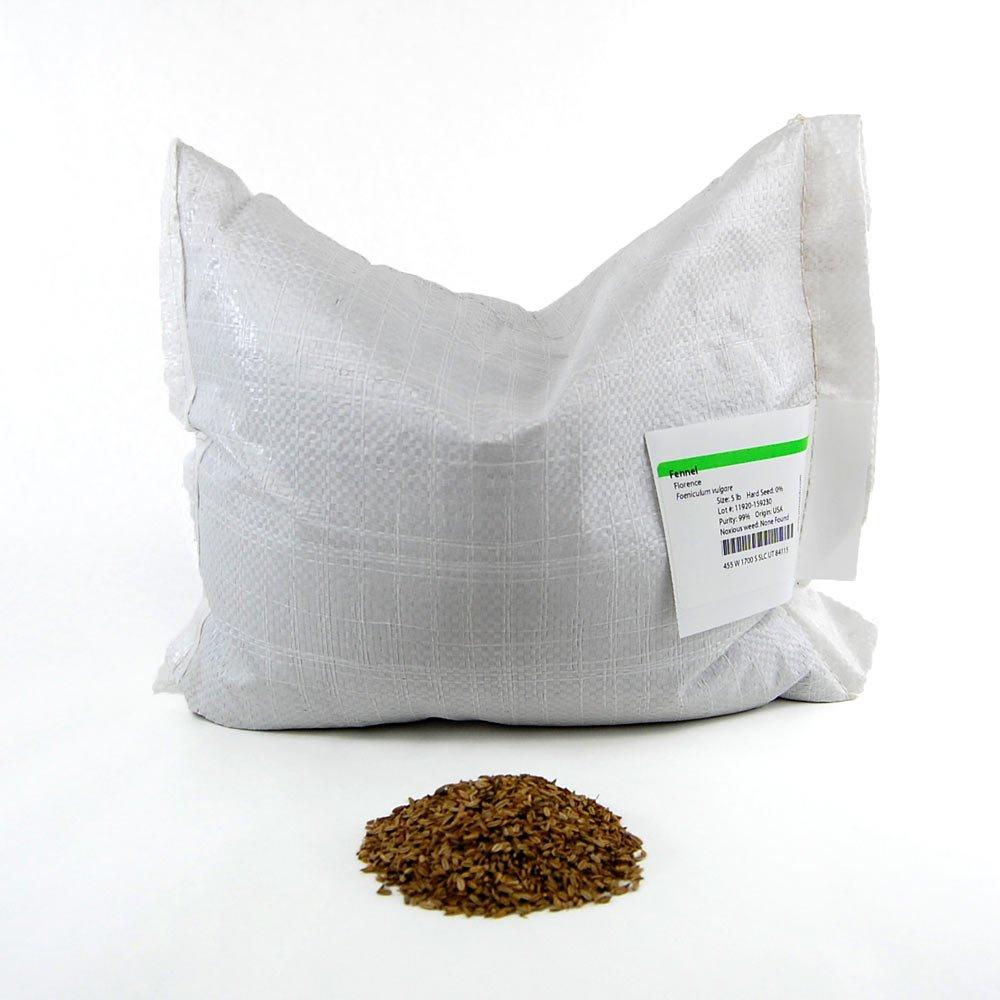 Florence Fennel Herb Seeds: 5 Lb - Bulk, Non-GMO, Herbal Garden & Microgreens Seeds - Grow Micro Herb Greens