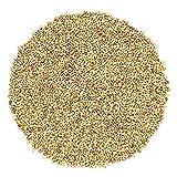 Organic Alfalfa Sprouting Seeds by Food to Live (Non-GMO, Kosher, Bulk) — 20 Pounds