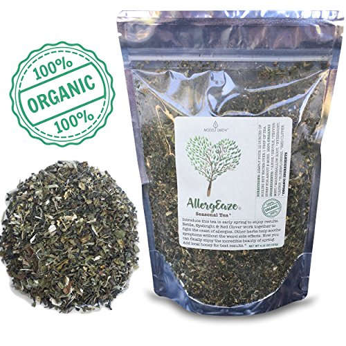 Modest Earth AllergEaze Allergy Relief Natural Herbal Tea - 100% Organic Non-Drowsy Drink - Hay Fever Remedy for Itching, Cough, Headache, Stuffy Nose, Nasal and Sinus Congestion - 48+ Cups Per Pack (Best Remedy For Asthma Cough)