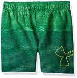 Under Armour Toddler Boys' Volley Fashion Swim Short, Green/Blue, 4T