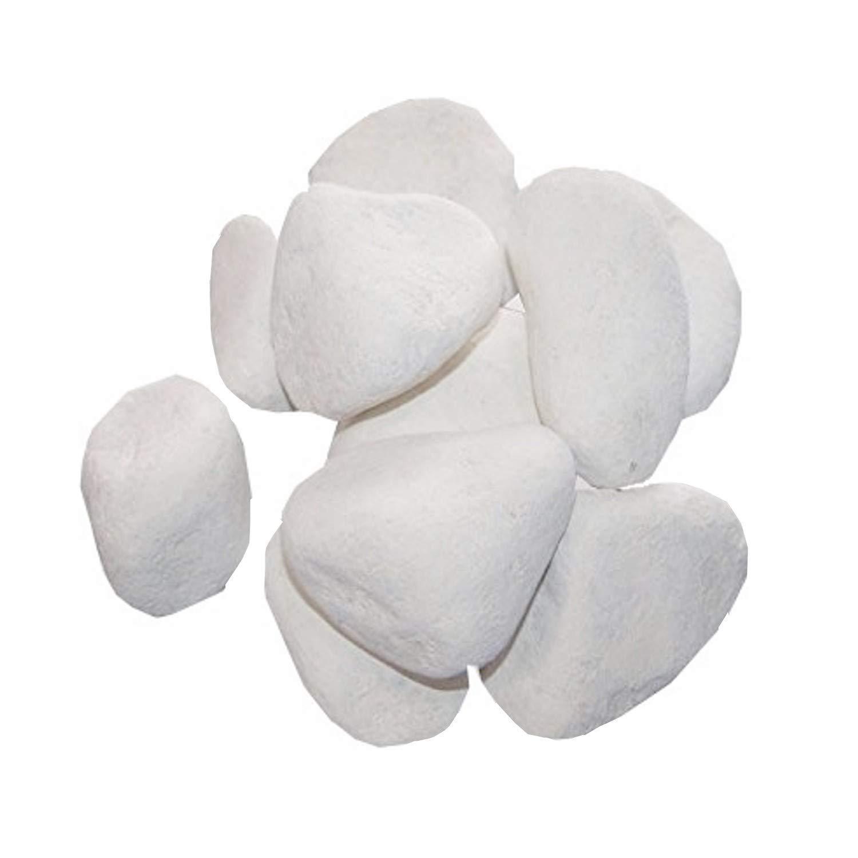10 sassi decorativi per camini al bioetanolo, gel di etanolo, di colore bianco Kaminbau Mierzwa