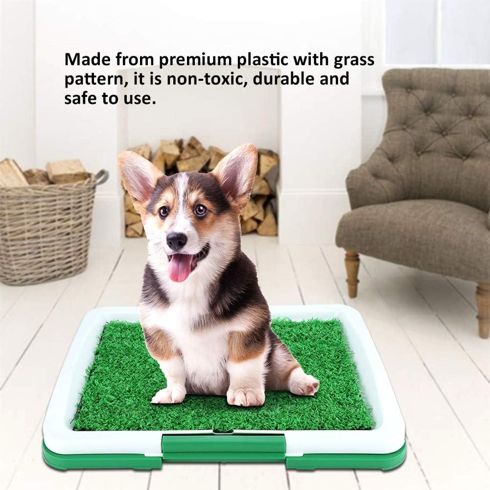 Zerone toilette per cani e animali domestici Vasino Matte Grass Pad con rete Scomparto da collezione Lato di avvio Indoor Toilette Pee Training