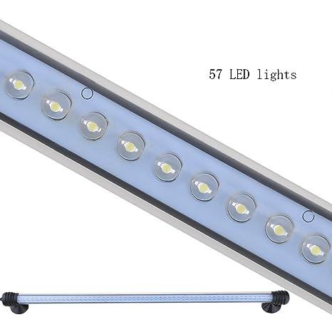 Lámpara Acuario Luces para Acuarios y Estanques 57 LED 4w Color de Luz Blanco con Enchufe EU: Amazon.es: Bricolaje y herramientas