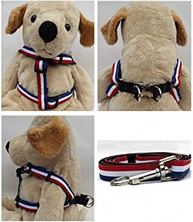 "product image for Diva-Dog 'Patriotic Pooch' Custom 5/8"" Wide Dog Step-in Harness with Plain or Engraved Buckle, Matching Leash Available - Teacup, XS/S"