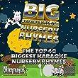 Mr Entertainer Big Karaoke Hits of Nursery Rhymes - Double CD+G (CDG) Pack. Top 40 Greatest Childrens Songs. With Karaoke & Vocal Versions