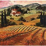 Dawn of a Tuscan Vineyard by Eva Szorc Art Print, 18 x 18 inches