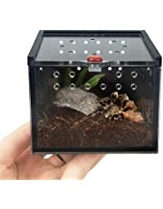 G-wukeer Terrariums pour Reptiles, Boîte Transparente De Transport D'aliments Vivants pour Le Transport De Reptiles Acryliques, pour Tortue-lézard Serpent/Geckos/Grillons/Escargots