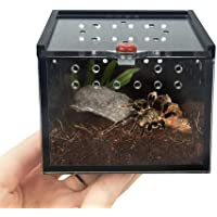 Wustrious Insect Feeding Box, Acrylic Transparent Reptile Transport Breeding Live Food Feeding Box, for Snake Lizard Turtle/Geckos/Crickets/Snails/Hermit Crabs/Baby Tortoise