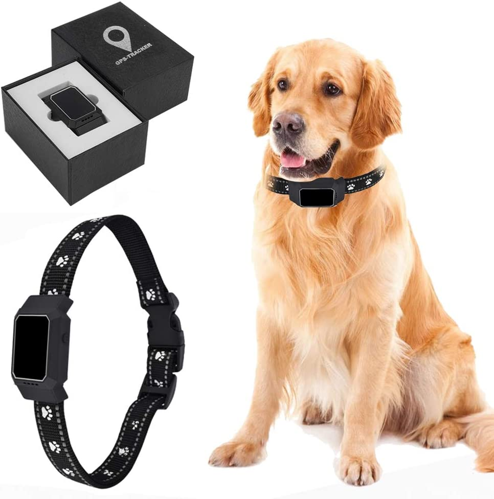 DCUKPST Localizzatore GPS per Cani, Collar GPS Perros Impermeable Mascota GPS Localizador de Rastreador en Tiempo Real Anti-Pérdida GPS Collar Rastreador para Gato, App Control