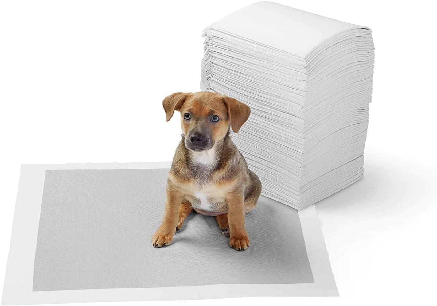 AmazonBasics - Empapadores de adiestramiento para perros, carbón, normal, 40 unidades