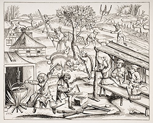 Country Life 19Th Century Reproduction Of Woodcut In Folio Edition Of Virgil Published In Lyons 1517 Poster Print (16 x 13) ()