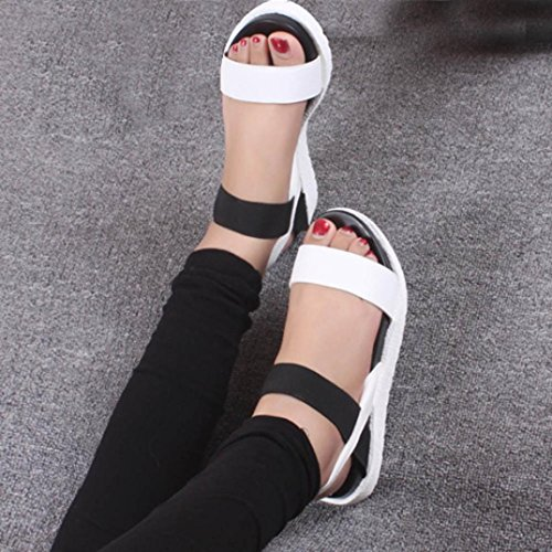 Amiley Sandaler Tøfler Flip-flop For Kvinner, Kvinner Sommer Sandaler Sko Damene Flip Flops Hvit