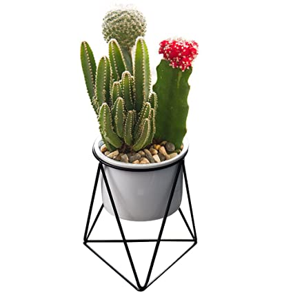 . Modern Plants and Planters Yousun 6 inch Ceramic Succulent White Planter  Pot Indoor with Metal Stand for Succulent Plants Cactus Bonsai  White black