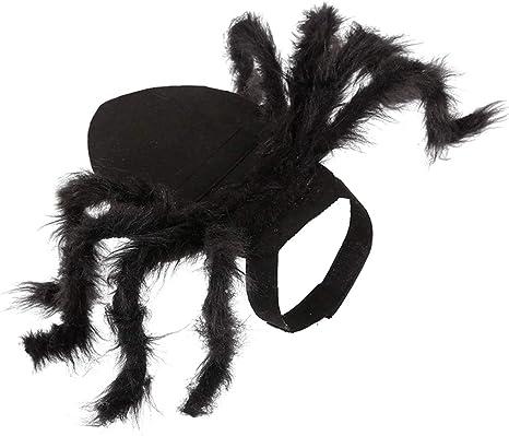 Koobysix - Disfraz de araña para Perro, para Halloween, para ...
