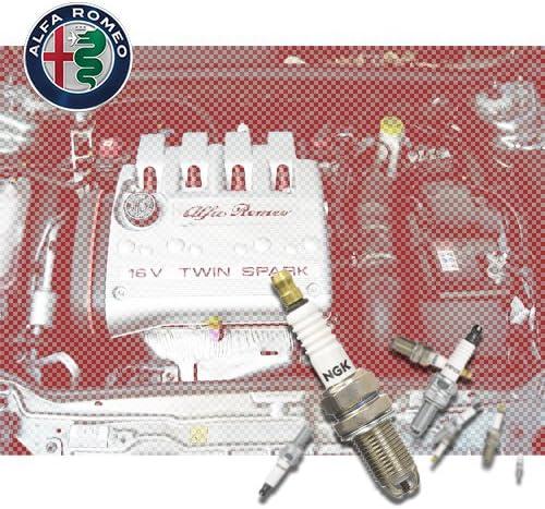 932 Kit 8 Candele NGK Champion per Alfa Romeo 156 Motori ALFA ROMEO Twin Spark T.Spark T Spark T S TS T.S 1.8 16V T.SPARK 1997//09-2000//10 1747cc 144CV 106kW Twinspark