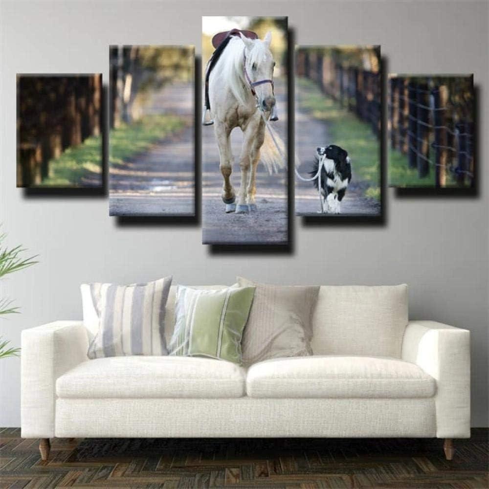IIIUHU 5 Piezas Cuadro sobre Lienzo De Fotos Caballo Blanco sosteniendo un Perro Lienzo Impresión Cuadros Decoracion Salon Grandes Cuadros para Dormitorios Modernos Mural Pared Listo para Colgar