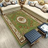 Pile Shag Rug Contemporary Living & Bedroom Soft Shaggy Area Rug Carpet Living Room Sofa Rug Court Style Padded Coffee Table Pillow Rug (Color : C, Size : 0.8 × 1.5 meters)