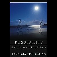 Possibility: Essays Against Despair book cover