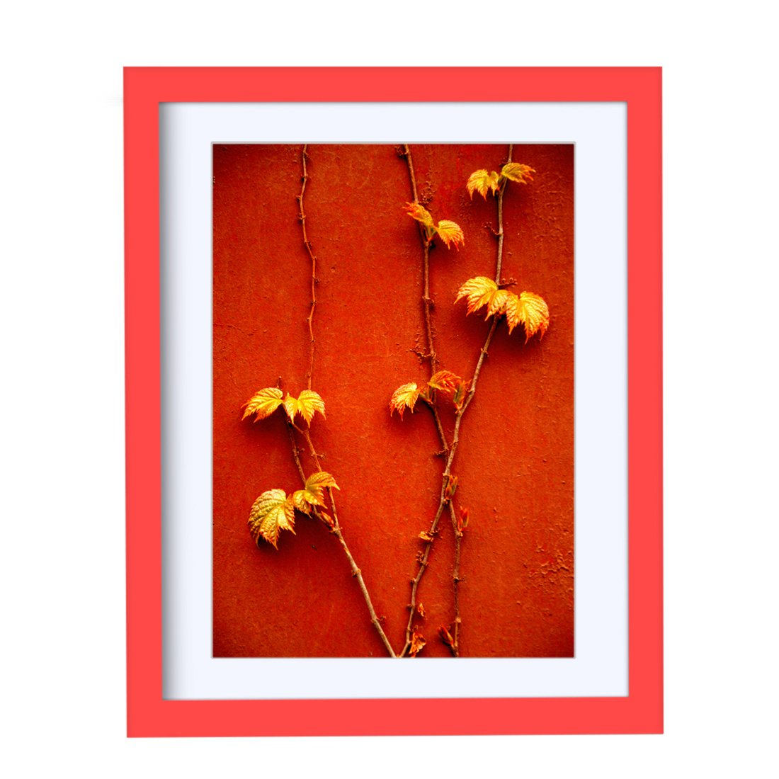BOJIN Red 11x14 Inch Wall Wood Picture Frames For Portrait or Landscape, Made To Show Picture A4 With Mat BOJ003078