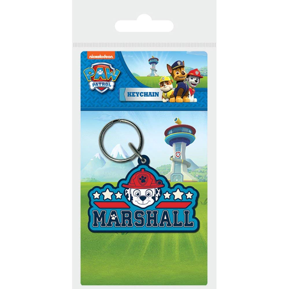 Amazon.com: Pyramid International Paw Patrol Marshall ...