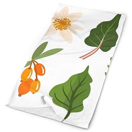 Amazon.com: Medicinal Plants and Herbs Original Headband ...
