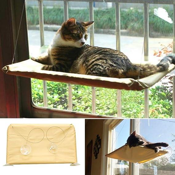 D-SYANA8 Hamaca con Ventosa para Ventana de Gato, para Cama de Perca, Cuna o Gato, no Requiere Herramientas: Amazon.es: Hogar