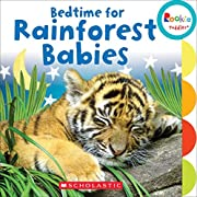 Bedtime for Rainforest Babies (Rookie Toddler)