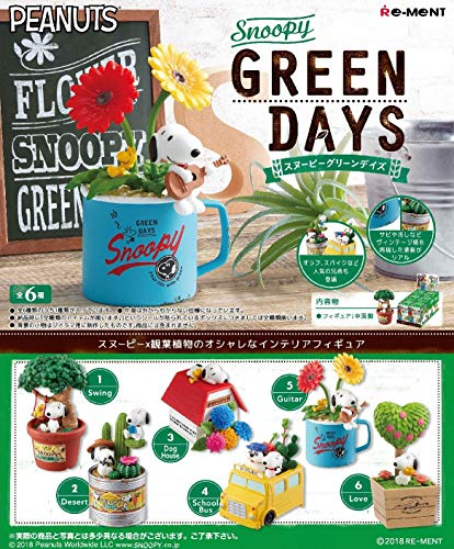 Peanuts Snoopy Green Days 6Pack Box ()