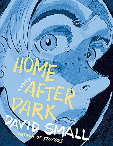 Book Cover: Home After Dark: A Novel