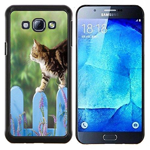 STPlus Gato en una caja Animal Carcasa Funda Rigida Para Samsung Galaxy A8 #10