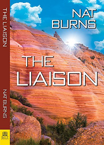 The Liaison: Book One in the Desert Willow Series by [Burns, Nat]