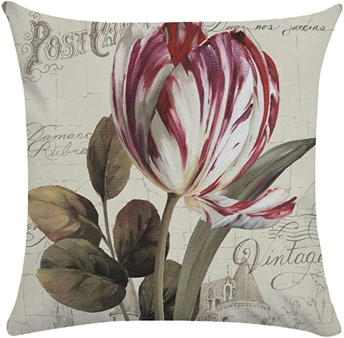 Image ofCaogsh - 2 fundas de almohada de felpa corta para cojín lumbar, sofá, almohada, almohada retro con diseño de pájaros y flores, algodón mixto, Zt002742, 50x50cm(Double-sided printing)