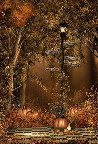 Laeacco Vinyl 5x7FT Photography Background Gloomy Forest Night Trees Road Sign Lamp Pumpkins Halloween Children Party Adults Background 1.5(W) x2.2(H) m Backdrop Video Photo Studio Props -