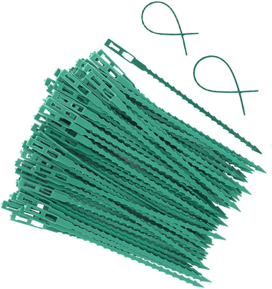 arbusto y Vid Lazos de pl/ástico para jard/ín 50 Unidades de Bridas Ajustables para Plantas Flexibles AKAMAS Soporte para Plantas Bridas Flexibles para Plantas