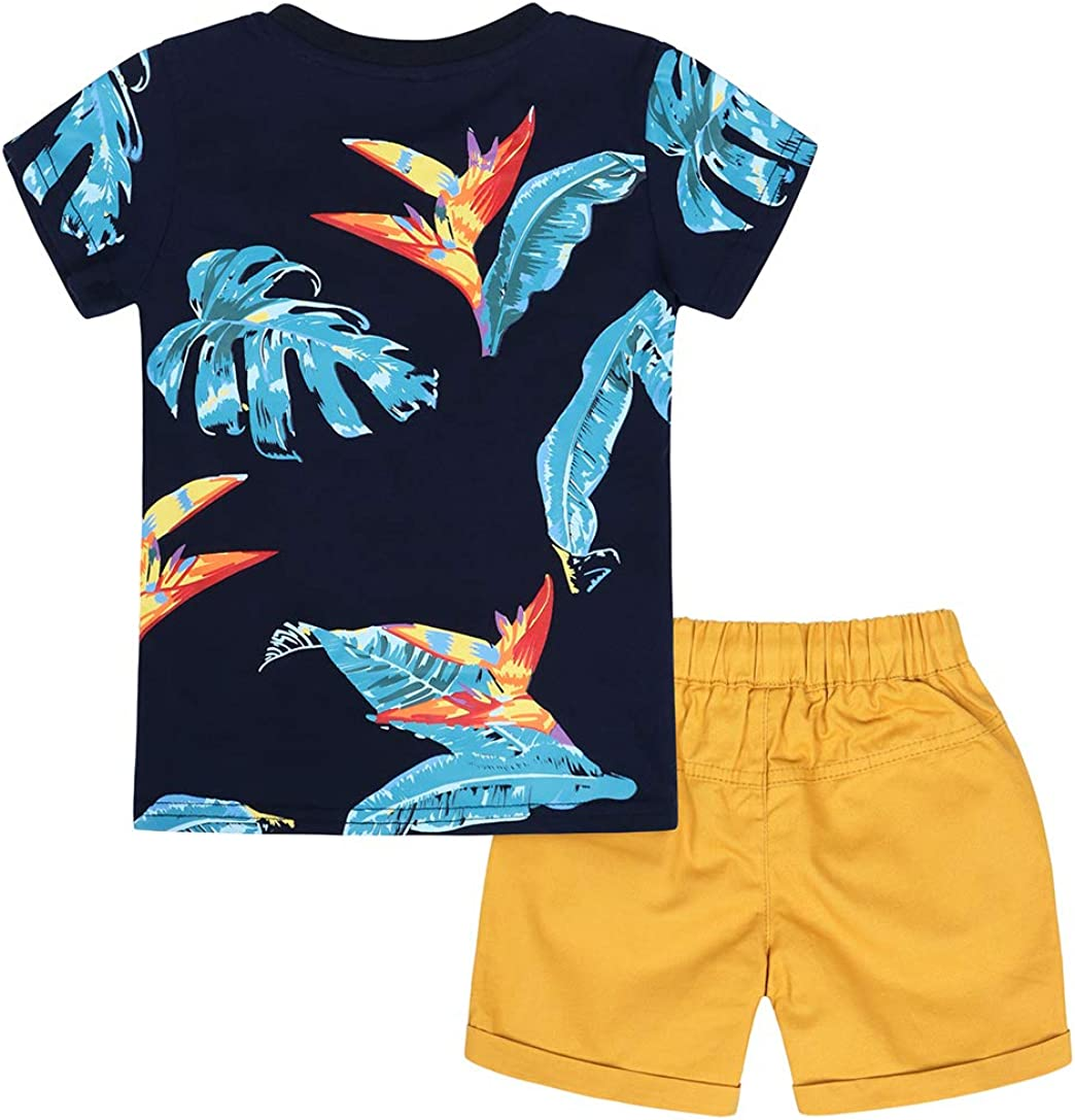 AmzBarley Toddler Boys Clothes Cotton Short Sleeve Tee and Shorts Set Kids 2 Pieces Summer Outfit Set
