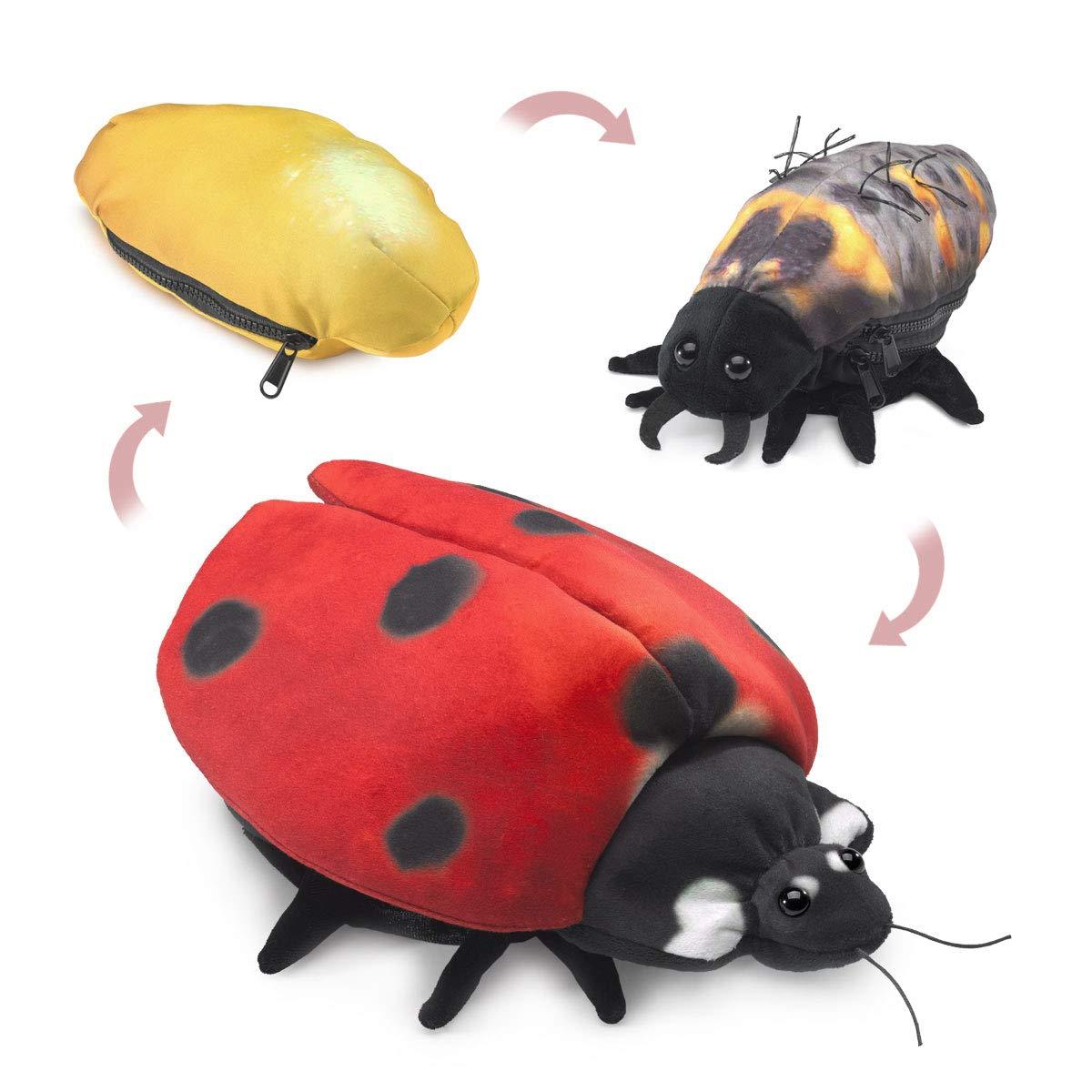 Folkmanis Ladybug Life Cycle Reversible Hand Puppet