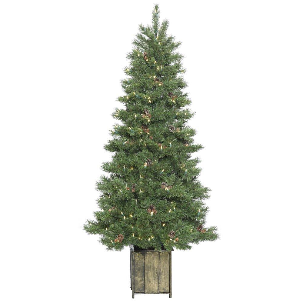 Vickerman Potted Newfield Fir Christmas Tree
