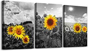 Black and white Pastoral scenery sunflower flowers Canvas Wall Art for Living Room family Bedroom wall art painting Home Decoration,Bathroom Wall Decor kitchen wall pictures artwork,16x12 3 piece set