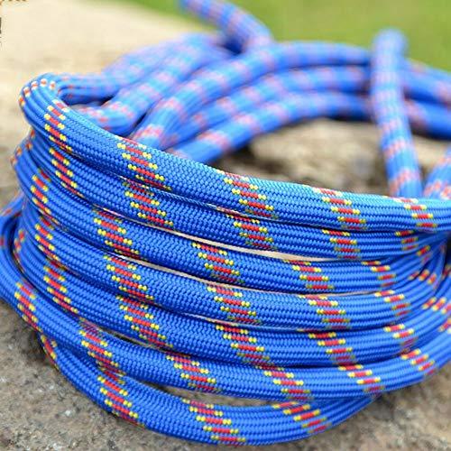 尊敬する湿度居間プロフェッショナルクライミングエイドロープ、Mutil用ホームロープ、ラペリングアブセイリングロープアウトドア高抵抗ロープ2カラビナ10mm径 (色 : 赤, サイズ : Diameter 10 mm/15M)