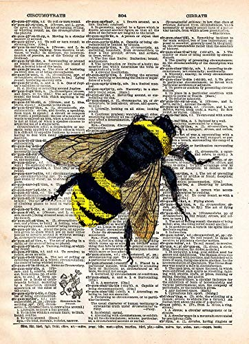 - Bumblebee art print, science art, vintage bumble bee insect lithograph print on old dictionary page, single bumblebee