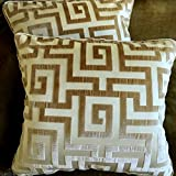 Clarence House Cut Silk Velvet Fabric Throw Pillows Beige Set of 2 New Labyrinth